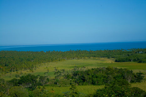 View From Loma (mountain) over the Coson Beach and Coconut Plantation