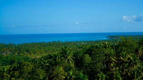 Viev From Loma (mountain) over the Coson Beach and Coconut Plantation